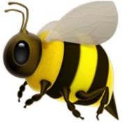 Μελισσοκομία (3)